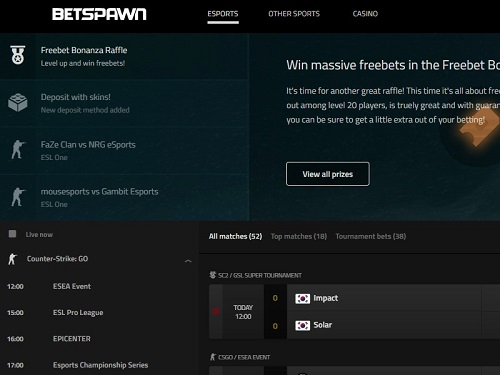 Betspawn Screenshot